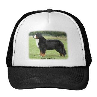 Bernese Mountain Dog 9Y236D-087 Cap
