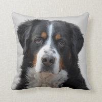 Bernese Mountain dog photo cushion