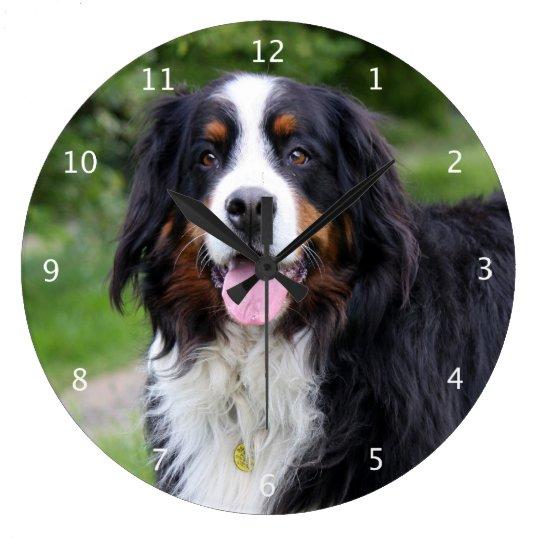 Bernese Mountain dog beautiful photo portrait Large Clock