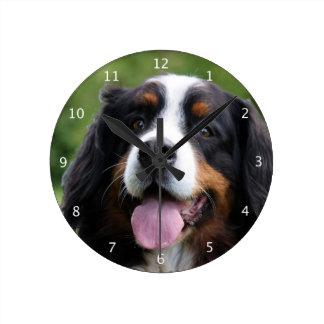 Bernese Mountain dog beautiful photo portrait Round Clock