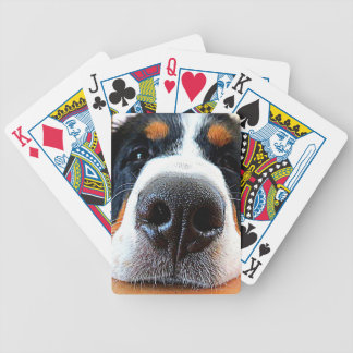 Bernese Mountain Dog Cards