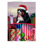 Bernese Mountain Dog Christmas Surprise Greeting Cards