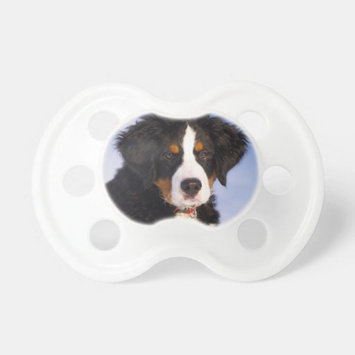 Bernese Mountain Dog - Cute Puppy Photo Baby Pacifiers