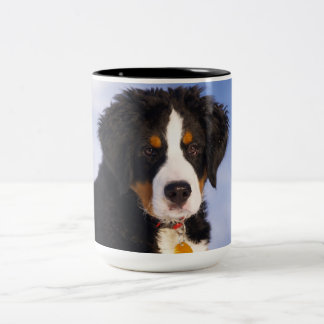 Bernese Mountain Dog - Cute Puppy Photo Two-Tone Coffee Mug