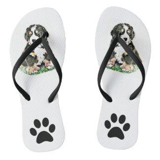 Bernese Mountain Dog Flip Flops