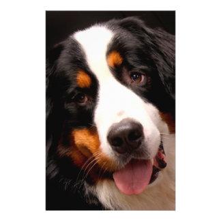 "Bernese Mountain Dog 5.5"" X 8.5"" Flyer"