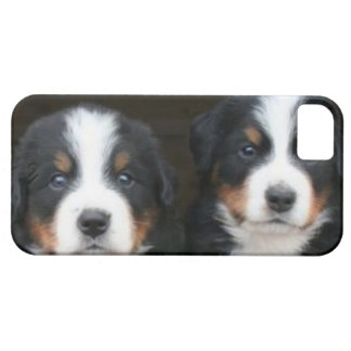Bernese mountain dog iPhone 5 Case-Mate ID™