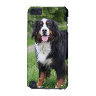 Bernese Mountain Dog ipod touch 4G case, gift iPod Touch (5th Generation) Case
