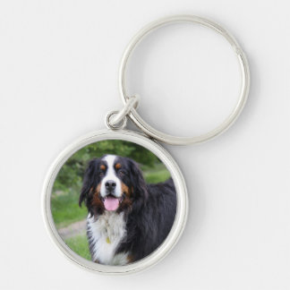 Bernese Mountain dog keychain, gift idea Silver-Colored Round Key Ring