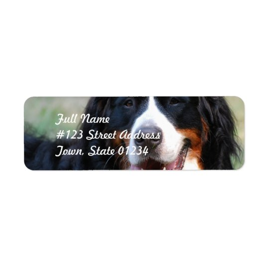 Bernese Mountain Dog Label