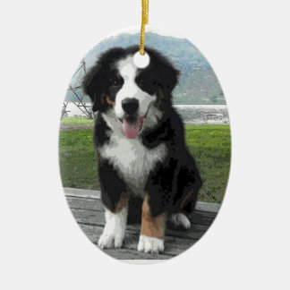 Bernese Mountain Dog Ornament