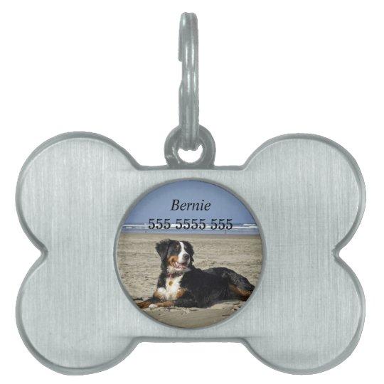 Bernese Mountain dog pet dog custom name id