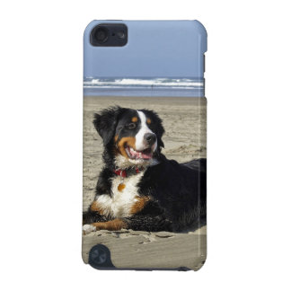 Bernese Mountain Dog photo ipod touch 4G case iPod Touch (5th Generation) Cover