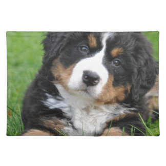 Bernese Mountain Dog Placemat