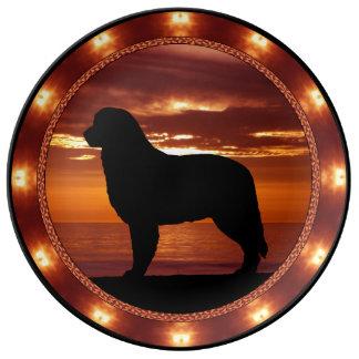 Bernese Mountain Dog Porcelain Plate