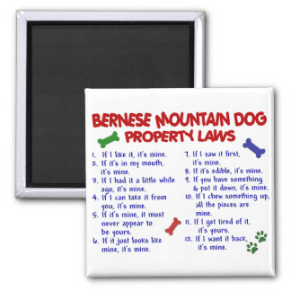 BERNESE MOUNTAIN DOG Property Laws 2 Magnet