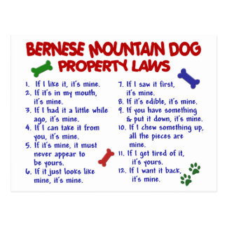 BERNESE MOUNTAIN DOG Property Laws 2 Postcard