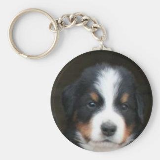 Bernese mountain dog pup keychain
