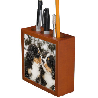 Bernese Mountain Dog Puppets Sniff Each Other Desk Organiser