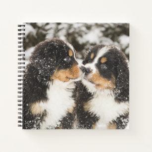 06252c54b569 Bernese Mountain Dog Notebooks | Zazzle.co.uk