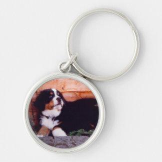Bernese mountain dog puppy keychain