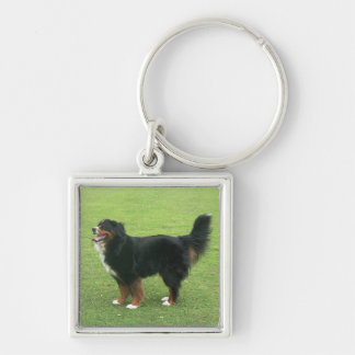 Bernese Mountain Dog Silver-Colored Square Key Ring