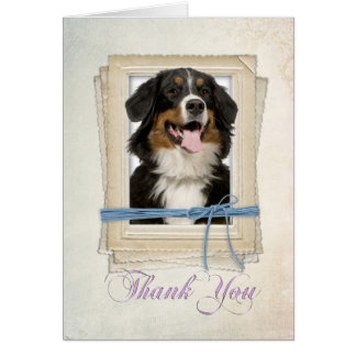 Bernese Mountain Dog Thank You Card