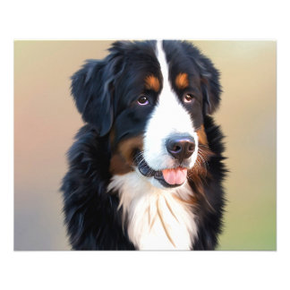 Bernese mountain dog, the obedient dog 11.5 cm x 14 cm flyer