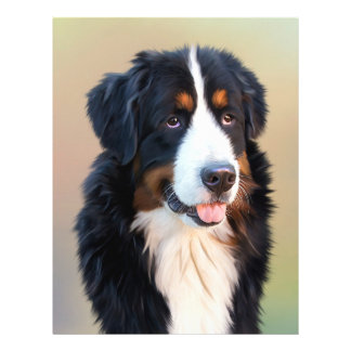 Bernese mountain dog, the obedient dog 21.5 cm x 28 cm flyer