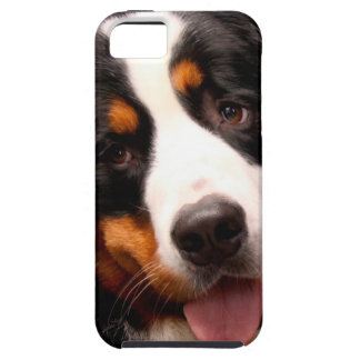 Bernese Mountain Dog Tough iPhone 5 Case