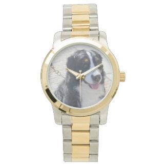 Bernese Mountain Dog Watch