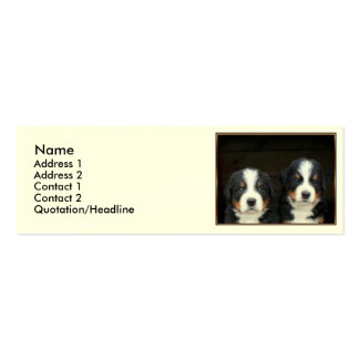 Bernese mountain dogs pack of skinny business cards