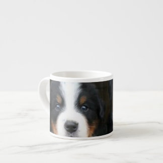 Bernese mountain dogs espresso cup