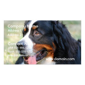 Bernese Mountain Puppy Business Cards