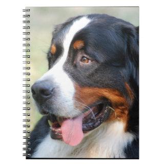 Bernese Mountain Puppy Notebook