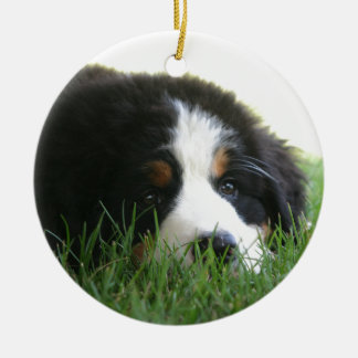 Bernese Puppy Christmas Ornament