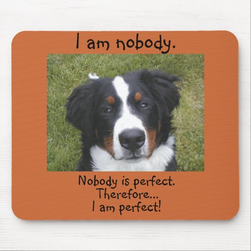 Bernese puppy face...nobody is perfect. mouse mat