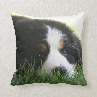 Bernese Puppy Pillow Throw Cushion