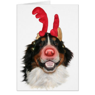 Bernese Roodolph Greeting Card