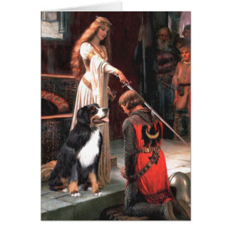 Bernese - The Accolade Greeting Cards