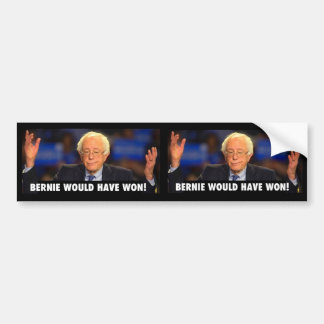 BERNIE WOULD HAVE WON! -  sticker for any surface Bumper Sticker