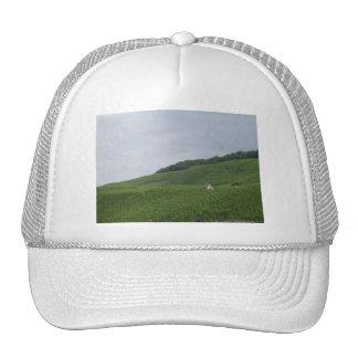 Bernkastle Cottage Hats