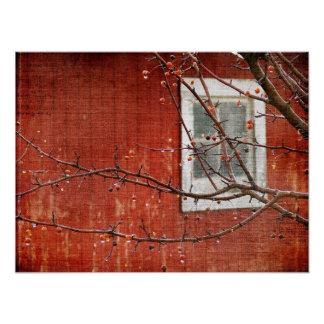 Berries and Barn Poster