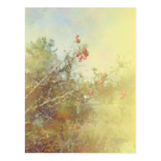 Berries and Branches Yellow Postcard