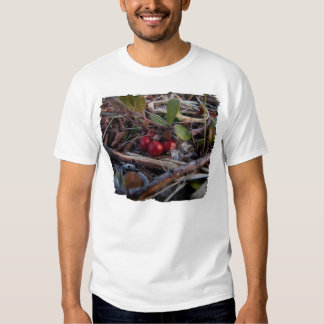 Berries and Twigs Shirts
