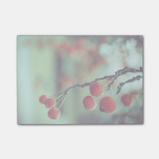 Berries Post-it® Notes