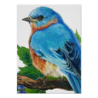 Berry Bluebird Poster