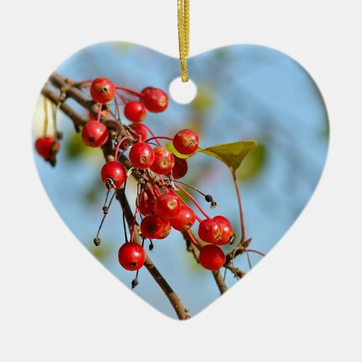 Berry Fall Products Ornament
