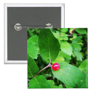 Berry in Boothbay 2 Inch Square Button