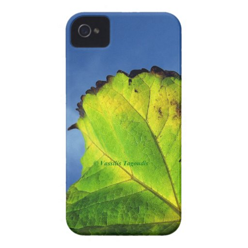 Berry leaf and Autumn colors. Case-Mate iPhone 4 Cases